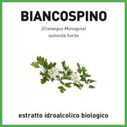 Estratto idroalcolico biologico di Biancospino