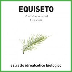 Estratto idroalcolico biologico di Equiseto