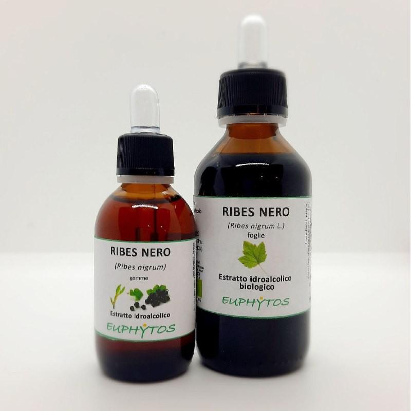 Estratto idroalcolico biologico di Ribes nero gemme