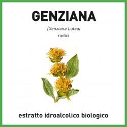 Estratto idroalcolico biologico di Genziana