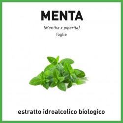 Estratto idroalcolico biologico di Menta