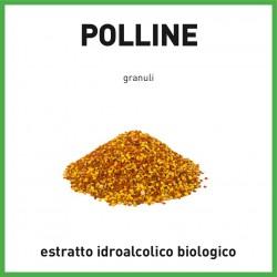 Estratto idroalcolico di Polline