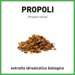 Estratto idroalcolico di Propoli