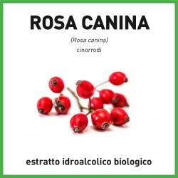 Estratto idroalcolico biologico di Rosa canina