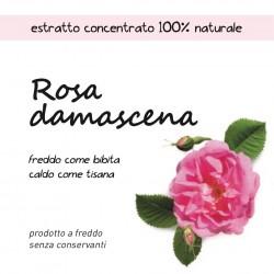 Estratto concentrato di Rosa damascena
